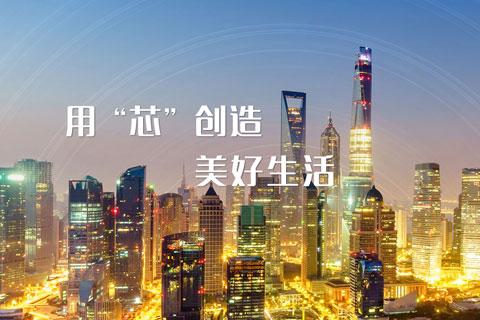 上海贝岭股份有限公司